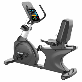 IREB1013GM - RECUMBENT BIKE